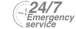 24/7 Emergency Service Pest Control in South Norwood, SE25. Call Now! 020 8166 9746